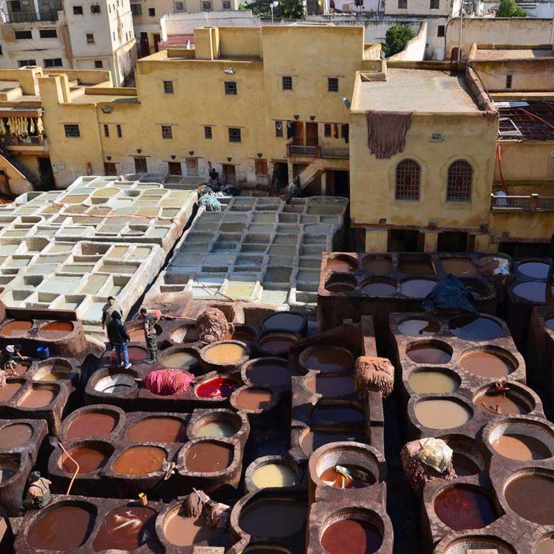 Como tratan el cuero en las curtiderías de Fez
